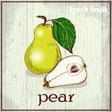 Hand drawing illustration of pears. Fresh fruit sketch background Stock Image