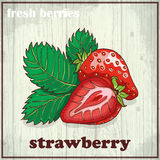 Hand drawing illustration of strawberry. Fresh berries sketch background Royalty Free Stock Photo