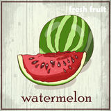 Hand drawing illustration of watermelon. Fresh fruit sketch background Royalty Free Stock Photo