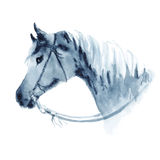Watercolor cowboy western horse head with bridle. Stock Photo