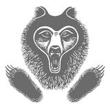 Hand drawing ink black and white bear face, paw, footprint of an animal Stock Photo