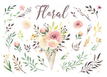 Hand drawing isolated boho watercolor floral illustration with leaves, branches, flowers. Bohemian greenery art in Royalty Free Stock Photo