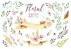 Hand drawing isolated boho watercolor floral illustration with leaves, branches, flowers. Bohemian greenery art in. Vintage style. Elements for greeting wedding royalty free illustration