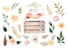 Hand drawing isolated boho watercolor floral illustration with leaves, branches, flowers, wooden box. Bohemian greenery Stock Photo