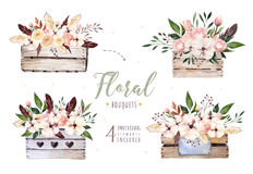 Hand drawing isolated boho watercolor floral illustration with leaves, branches, flowers, wooden box. Bohemian greenery Royalty Free Stock Photo