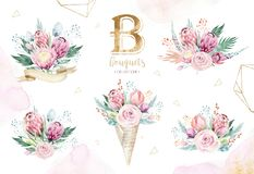 Hand drawing isolated watercolor floral illustration with protea rose, leaves, branches and flowers. Bohemian gold Royalty Free Stock Image