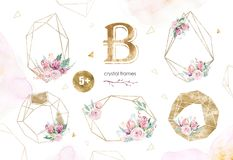 Hand drawing isolated watercolor floral illustration with protea rose, leaves, branches and flowers. Bohemian gold. Crystal frame. Elements for greeting wedding royalty free illustration