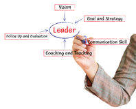 Hand drawing leader business plan. On a whiteboard Stock Illustration