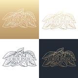 Hand drawing logo designes of cocoa beans. Stock Photos
