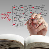 Hand drawing molecule structure Stock Images