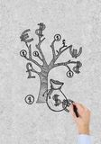 Hand drawing money tree Stock Photography