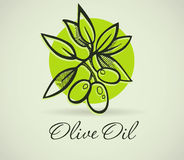 Hand-Drawing Olive Royalty Free Stock Image