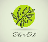 Hand-Drawing Olive Royalty Free Stock Photo