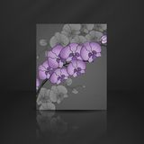 Hand Drawing Orchid Flower Royalty Free Stock Photography