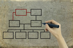 Hand drawing an organization chart on a  old paper Royalty Free Stock Image