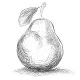 Hand drawing pear Royalty Free Stock Photography