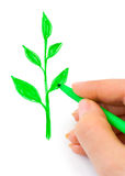Hand drawing plant Stock Photos