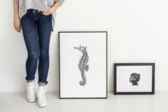 Hand drawing seahorse picture in photo frame Royalty Free Stock Images