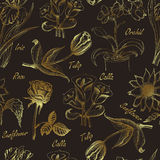 Hand drawing seamless pattern of flowers. Iris, calla lily, tulip, orchid, sunflower and rose Stock Images