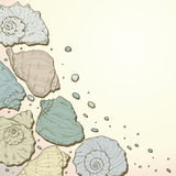Hand drawing seashell background Royalty Free Stock Photography