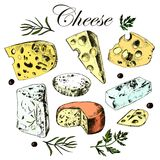 Hand drawing set with different cheeses Stock Photos
