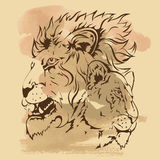 Hand- drawing sketch of lions. On old background for design Royalty Free Stock Photography