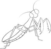 Hand drawing, sketch, mantis on a white background Stock Photography