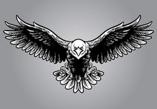 Hand drawing style of eagle Royalty Free Stock Images