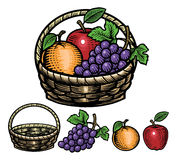 Hand drawing style of fruits in the basket Stock Image