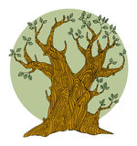 Hand Drawing Tree Stock Images