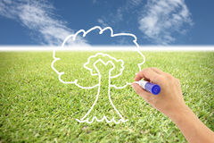 Hand is drawing a tree on the grass and blue sky. Stock Image