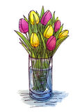 Hand drawing tulips in a glass vase Stock Photos