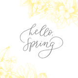 Hand drawing vector motivated phrase Hello, spring. Vintage floral background. Vector floral backdrop. Blooming garden trees. Botanical Illustration engraving Royalty Free Stock Photo