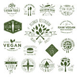 Hand Drawing Vegan Badges Stock Photos