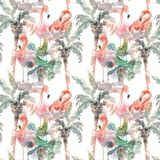 Watercolor seamless pattern of palm with flamingo on white background, Hand drawn illustration for your design. For. Hand drawing watercolor palm tree with stock images
