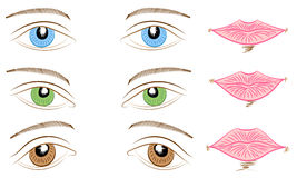 Hand Drawings of Different Types of Eyes and Lips. Blue, Green and Brown Eyes and Pink Lips. Royalty Free Stock Photography
