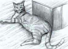 Hand-drawn ριγωτή γάτα Στοκ φωτογραφία με δικαίωμα ελεύθερης χρήσης