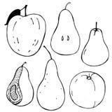 Hand-drawn φρούτα Apple και αχλάδι επίσης corel σύρετε το διάνυσμα απεικόνισης Στοκ Φωτογραφία