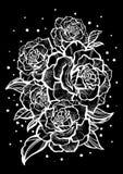 Hand-drawn όμορφα τριαντάφυλλα Τέχνη δερματοστιξιών Γραφική εκλεκτής ποιότητας σύνθεση Απεικόνιση που απομονώνεται διανυσματική Μ ελεύθερη απεικόνιση δικαιώματος