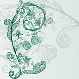 Hand drawn abstract flowers. Vector hand drawn abstract flowers, snail, butterfly Stock Photography