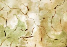 Hand drawn abstract watercolor texture ochre and green  cracked background. Hand drawn abstract texture watercolor ochre and green cracked background royalty free illustration