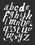 Hand drawn alphabet. Vector illustration. Royalty Free Stock Photo