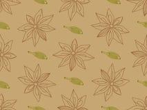 Hand-drawn anijsplant met cardamon naadloos patroon Royalty-vrije Stock Afbeelding