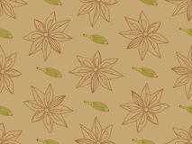 Hand-drawn anise with cardamon seamless pattern. Vector seamless pattern. Hand-drawn contour anise and cardamon elements royalty free illustration