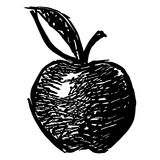 Hand drawn apple Royalty Free Stock Image