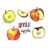 Hand drawn apples Stock Image
