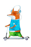 Hand-drawn aquarelle illustration of stylish cartoon fox on scooter wearing bright t-shirt and trousers listening to. Music in headphones Royalty Free Stock Image