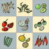 Hand drawn Asian vegetable vector set Stock Image