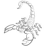 Hand drawn astrological zodiac sign Scorpion Stock Image
