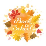 Hand drawn autumn Back to School typography poster with cute colorful leaves in flat style royalty free stock images
